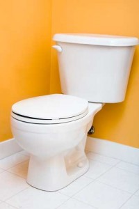 toilet with an orange wall behind it